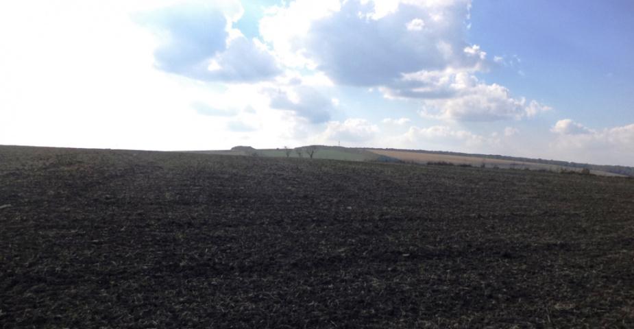 Boršice u Blatnice - zemědělské pozemky