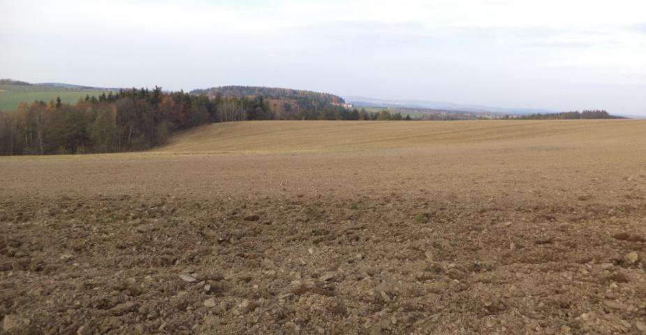 Prodej zemědělské pozemky Dešná
