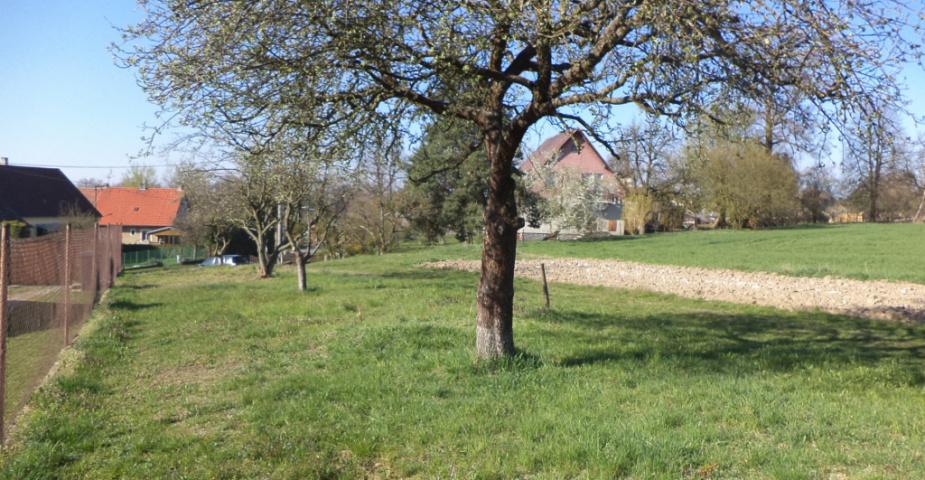 Tučapy u Soběslavi